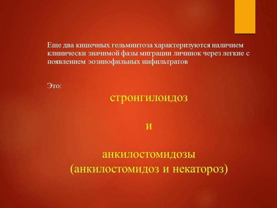 Гельминтозы тропиков_Слайд12