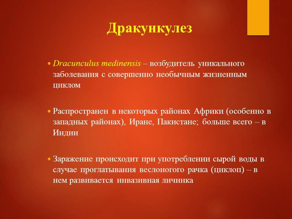 Гельминтозы тропиков_Слайд32