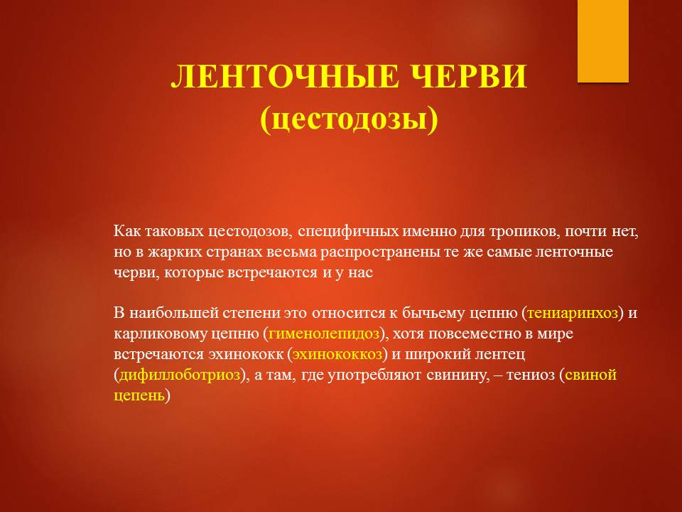 Гельминтозы тропиков_Слайд7
